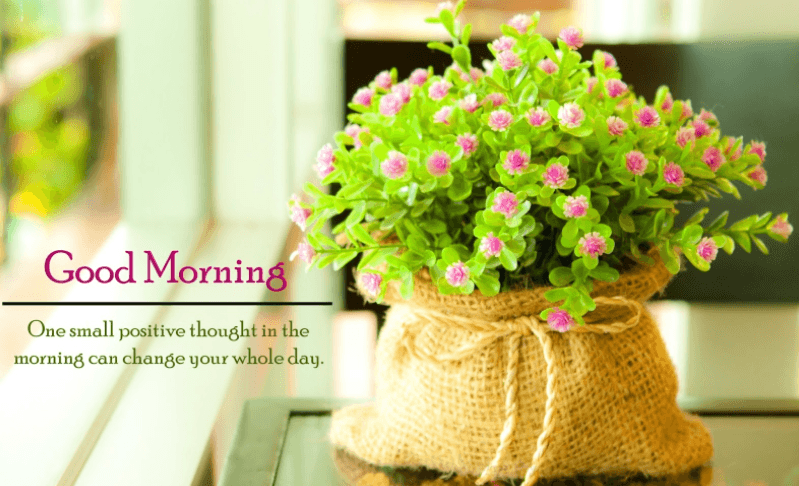 Best Good Morning HD Wallpapers