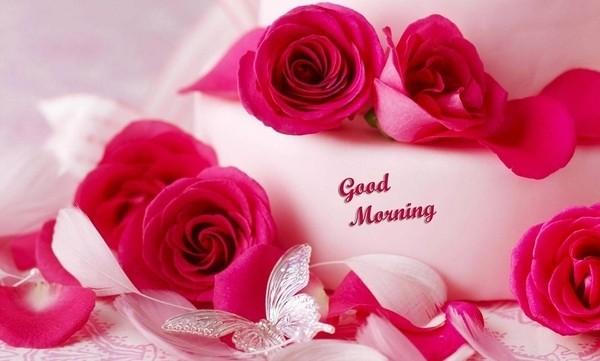 Touching Good Morning Love
