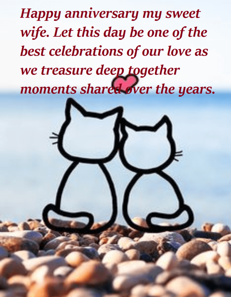 Happy Anniversary Quotes Wishes For Wife