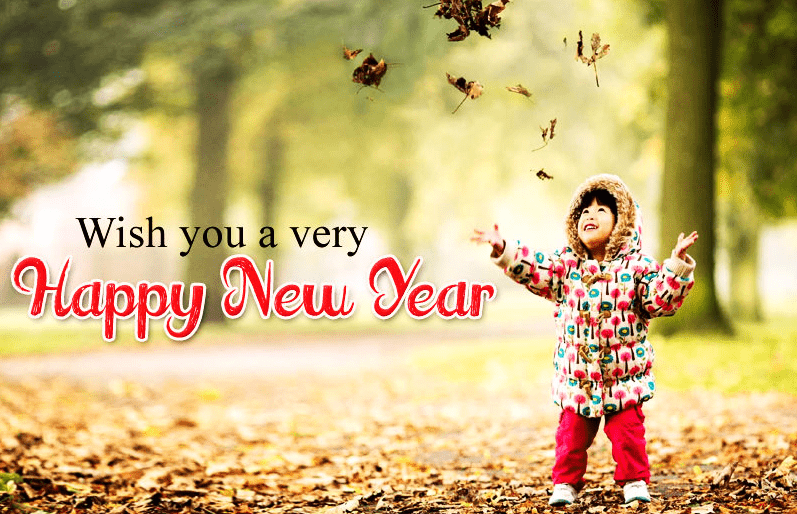 Wish You a Very Happy New Year 2019