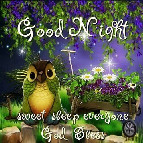 New Good Night Quotes & Messages for Her