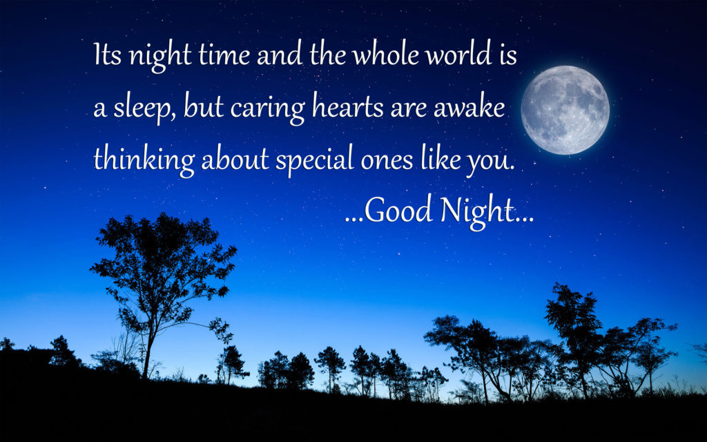 Beautiful Good Night Quote
