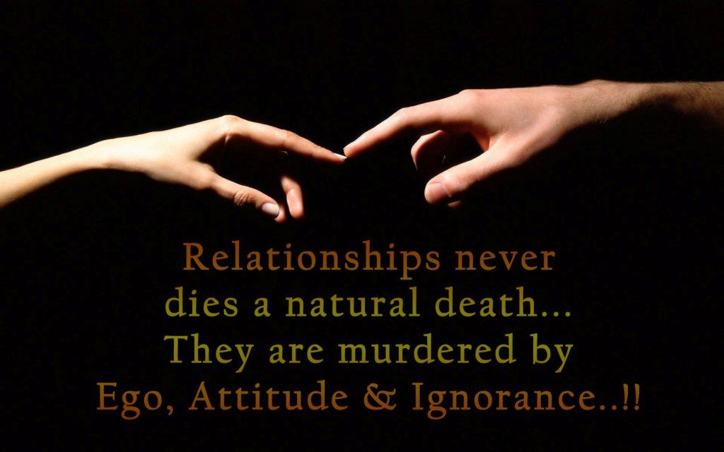 Beautiful Relationship High Definition