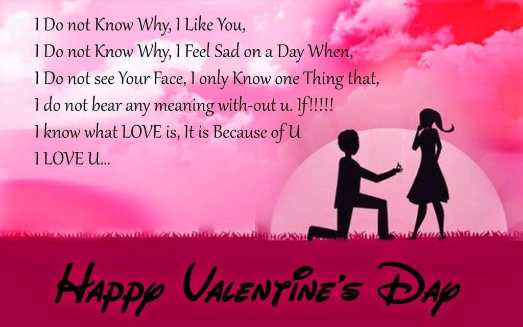 Happy Valentines Day Quotes Love