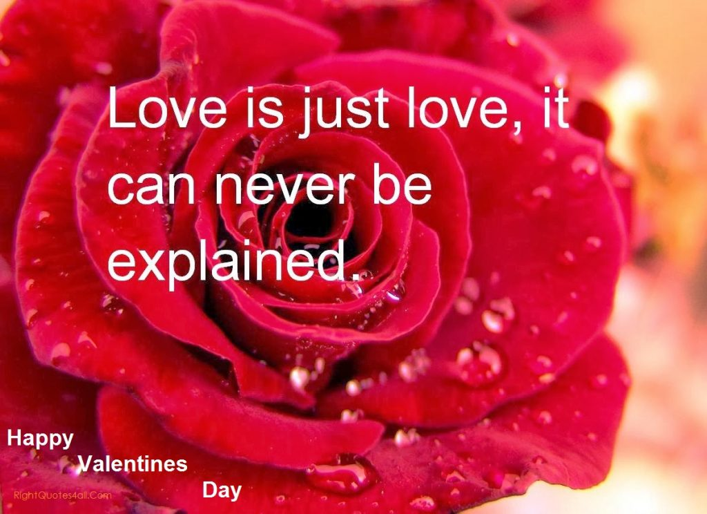 Famous Happy Valentines Day Quotes