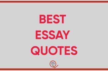 essay quotes