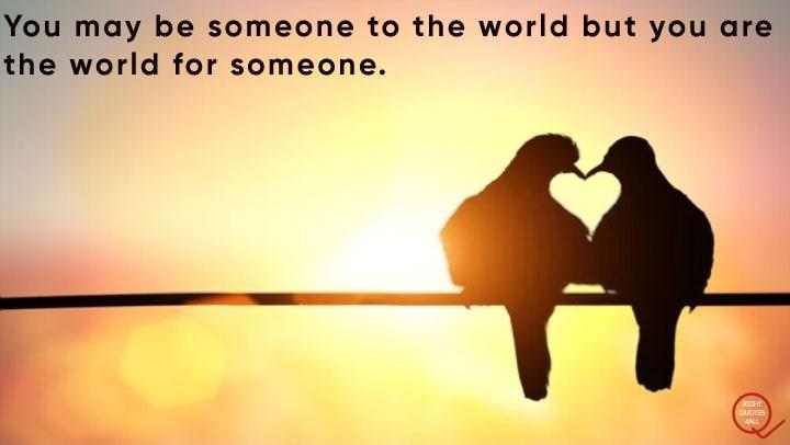 Top Best Love Quotes
